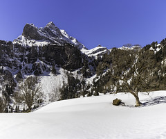 A7207167-Pano (rickwarner) Tags: canton glarus süd braunwald hiking switzerland winter