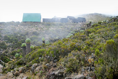 Horombo Huts (Ralph Apeldoorn) Tags: kilimanjaro mountkilimanjaro mountain senecio volcano tanzania tz