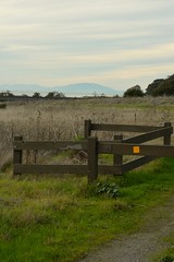 Park Gate (JustinPhiIIips) Tags: nikon d3200 outdoors adventure explore walk hike landscape west coast us california point pinole regional park nature sky cloudy clouds sunset golden hour gate wood grass vertical mountains