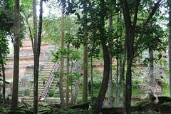 Angkor_Phimeanakas_2014_08