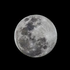 Waxing Gibbous Moon (ruifo) Tags: nikon d850 nikkor afs 200500mm f56e ed vr full waxing gibbous moon 964 illumination mexico city df cdmx ciudad méxico luna lua noite noche night sky cielo ceu céu astro astrophotography astrofotografia astrofotografía earth terra tierra