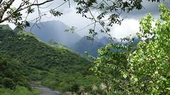 Polynésie 2019 - Tahiti (Valerie Hukalo) Tags: tahiti hukalo valériehukalo polynésiefrançaise frenchpolynesia océanpacifique pacificocean polynesia montagne papenoo vaihiria archipeldelasociété archipel island île océanie polynésie françaisefrench polynesiaocéan pacifiquepacific oceanfrancearchipel de la société