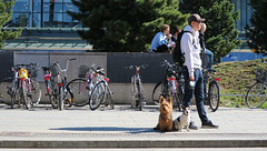 Man and dogs outside Kamppi Shopping Centre (Joshua Khaw) Tags: dog bike man pets dogs street