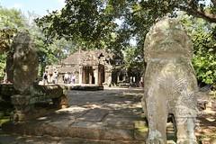 Angkor_Ta Prohm_2014_08