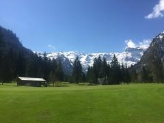 Warten auf den Golffrühling