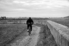 Sea Wall (nigel@hornchurch) Tags: dsc0098 canveyisland england unitedkingdom