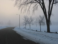 Finding one's path (BreezyWinter) Tags: fog foggy march morning road snow path