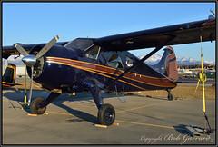 N907TK Private Owner (Bob Garrard) Tags: n907tk de havilland canada beaver mk 1 lhd palh anc panc dhc2