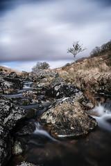 The meandering and rocky West Dart river, next to Wistman's Wood. (Doddstar) Tags: wistman'swood devon manfrotto longexposure gobefilters xt3 westdartriver dartmoor