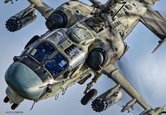 Камов Ка-52 / Kamov Ka-52 (FoxbatMan) Tags: камов ка52 kamov ka52 вкс россии russian air force армия2018 armya2018