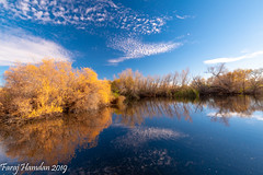 DSC_0654 (farajalhattab) Tags: landscape arizona tucson tamaron nikon d5500 superwide nature bird duck wetland trees sky cloud water