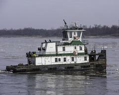 m/vCarrieElizabeth_SAF0307 (sara97) Tags: copyright©2019saraannefinke harborboat mvcarrieelizabeth mississippiriver missouri photobysaraannefinke pushboat saintlouis towboat