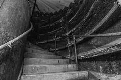 DSC_0009 (SubExploration) Tags: underground abandoned tunnels deep level shelter deeplevelshelter ww2 decay urbex
