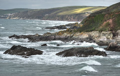 Breezy day in Whitsand Bay, Cornwall (Baz Richardson) Tags: cornwall whitsandbay roughseas cliffs rocks sharrowpoint nationaltrust