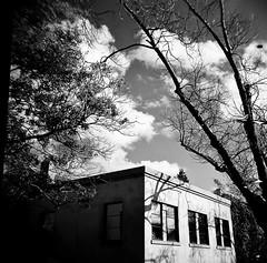 North Berkeley Library and clouds (Timothy Lewis Jr.) Tags: holgaphotos holga120n blackandwhite blackandwhitefilm berkeley bw analoguefilm kodaktrix trixpushed2stops clouds orange filter