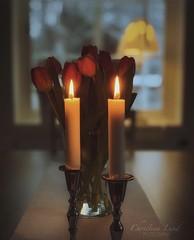 ~ tranquility ~ Riddarhyttan Sweden; iPhone XS portrait mode (Tankartartid) Tags: kitchenwindow rödablommor rödatulpaner röda redflowes red redtulips lamp lampa fönsterlampa tulpaner skärpedjup köksfönster fönster ljus köksbord kök flowers tulips depthoffield dof bokeh window candles kitchentable kitchen europe västmanland sweden riddarhyttan