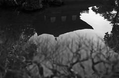 February 19, 2019_kyoto_26 (Satoshi Kondo) Tags: bw bnw blackandwhite blackandwhitephotography blackandwhitephoto bnwphoto bwphoto bnwphotography bwphotography blackandwhitepoto blackandwhitepotography monochrome filmphotography filmcamera filmphoto film filmpoto leica leicaphoto leicaworld leicam3 street streetphoto streetsnap streetphotography summicron summicron50mm kyoto japan 京都 白黒 フィルム フィルム写真 フィルムカメラ ライカ ライカm3 ズミクロン kodak