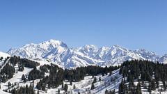 Le Mont Blanc (Mare Crisium) Tags: montagne mountain neige snow blue bleu trees arbres enneigés fir sapin ciel sky blanc white haute high pic peak sommet montblanc hiver winter alps alpes cliff crestvoland