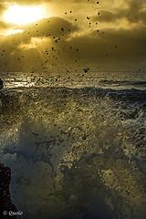 Las Malvas - Lanzarote (frankkevedo) Tags: canarias lanzarote atardecer