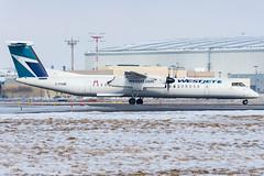 Westjet_Dash8-Q400_C-FKWE_YYZ_FEB19 (Jonas_Evrard) Tags: aviation airport aircraft airplane airliner spotting spotter photography planespotting plane planes planespotter