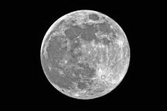 Volllmond (Michael Döring) Tags: gelsenkirchen bismarck vollmond moon luna lune sp150600mm d7200 michaeldöring