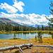 Ellery Lake, Yosemite High Country 2017