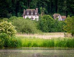 Thatched roof cottages, Honfleur, Normandy, France (Bob Radlinski) Tags: calvadosdepartment côtefleurie europe france honfleur jardinedespersonnalités normandie normandy travel em1c6600orf