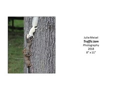 """Traffic Jam • <a style=""""font-size:0.8em;"""" href=""""https://www.flickr.com/photos/124378531@N04/45734223005/"""" target=""""_blank"""">View on Flickr</a>"""