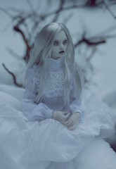lake (dolls of milena) Tags: bjd abjd resin doll marmite sue butterfly angel egg portrait lake snow outdoor menagerie