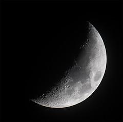 Moon 2019-01-12 (nicklucas2) Tags: astrophotography moon moon2019 moonjan2019
