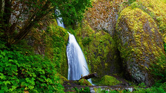 During all these years there existed within me a tendency to follow Nature in her walks… (ferpectshotz) Tags: wahkeenafalls wakheenacanyon fairyfalls oregon portland columbiarivergorge summer roadtrip green foliage rain forest trail hike