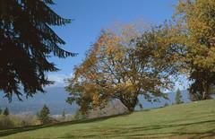 Burnaby Mountain Park (jvde) Tags: 3570mmf3345nikkor burnaby coolscan film fujicolor400 gimp nikonfe