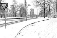 Curvas nevadas (Jo March11) Tags: bilbao bizkaia paísvasco euskalherria euskadi nieve ieletxigerra idoiaeletxigerra eletxigerra canon canoneos