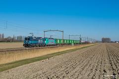 24/02/2019 | Zevenbergen (SB-2013) Tags: lineas traxx green xpress network sweden express zevenbergen bombardier freight force 186 293 2825 46263 bentheim amersfoort kijfhoek essen spoorlijn 12 antwerpen noord