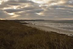 Weihnachtsspaziergang (liebeslakritze) Tags: weihnachten spaziergang strand strandhafer dünen ostsee wind wolken kalt cold winter christmasstroll beachgrass balticsea beach water clouds