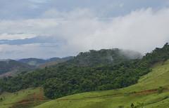 Rain forest (Márcia Valle) Tags: márciavalle nikon d5100 brasil minasgerais brazil verão summertime rainforest mataatlântica mata montanhas mountains céu nuvens sky clouds