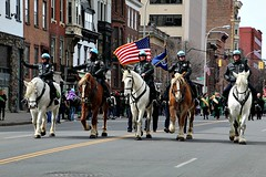 MOUNTED PATROL (MIKECNY) Tags: police lawenforcement horse equine mountedpatrol albany parade stpatricksday americanflag