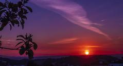 Postal _DSC2701-1 (Alberto Estella) Tags: cielo sea marina dom amanecer rocks paisaje larga exposición largaexposicion llargaexposicio clouds nublado mañana ligero mar catalunya puesta de sol frío hielo lago montaña agua mirador costa arena nubes roca bosque campo reflejos océano bahía playa hermoso azul montañas barcelona panorámico españa europa albertoestella paysage anochecer sony rx100m6 sonyrx100m6 sonyrx100 rx100 árbol hierba lirio flor lila