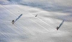 Morning Sentinels 2014 (Greg Reed 54) Tags: snow tree trees field fields newyork buffalo morningsentinels morning sentinels flight aviation aerial white