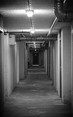 Binnendoor... #2019#january#assen#bw#bwphotography#bw_photooftheday#bnw#bnwphotography#bnw_planet#photography#photooftheday#daily#love#moodygrams#corridor#inside#picturetokeep_bnw#blackandwhite#instablackandwhite#instadaily#instapic#loveit (agnes.postma.hoogeveen) Tags: photooftheday love corridor instablackandwhite loveit moodygrams assen picturetokeepbnw bwphotography instadaily bnw inside 2019 bnwplanet blackandwhite january bw daily bnwphotography instapic bwphotooftheday photography