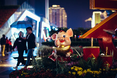 Year of the pig (Robert Anders) Tags: 2019 asia asien beleuchtung ccby canonef85mmf12liiusm canoneos6d china city creativecommons eos6d illumination jahrdesschweins nacht night pig schwein shezhen stadt strase street urlaub urlaub2019 yearofthepig 华强北 深圳市 shenzhen guangdong peoplesrepublicofchina cn