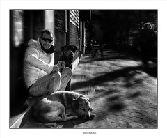 Black Dog ... (michel di Méglio) Tags: bw olympus zuiko dogs monochrome street people silverefexpro noiretblanc marseille