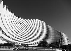 curves (joannab_photos) Tags: