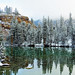 White or Green, Nature's Optical Illusion, Yosemite 2015