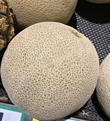 2019 Sydney: Rockmelon (dominotic) Tags: 2019 food fruit rockmelon iphone8 foodphotography shopdisplay circle yᑌᗰᗰy sydney australia