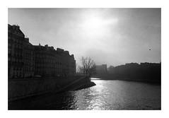 La Seine (madras91) Tags: nb noiretblanc blackandwhite bw monochrome film tx400 kodaktx400 kodak trix paris backlight landscape cityscape leicam2 leica summicron35mmf2v3 summicron 35mm