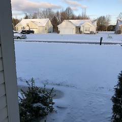 Last Night's Almost-Blizzard - Jan. 20, 2019 #snow #cincywx #goshen #ohio (ctrymouse_2000) Tags: snow cincywx goshen ohio