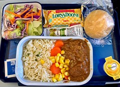 In Flight Meal (krossbow) Tags: copa airlines meal food rice corn beef roll bread pan lornadoone salad margarine tray iatethis