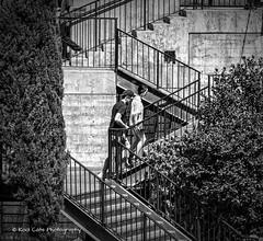 Street Photography (Kool Cats Photography over 11 Million Views) Tags: streetphotography scene street stairs oklahoma oklahomacity outdoor blackandwhite bw patterns lines leadinglines