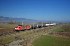 Southbound DB freight @ Rouffach (Wesley van Drongelen) Tags: db deutsche bahn schenker cargo dbs dbc baureihe br serie série class type reihe 185 br185 traxx rouffach train trein zug treno merci